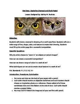 """""""Whoooooo's"""" looking at You! Owl Eyes : Exploring Charcoal"""