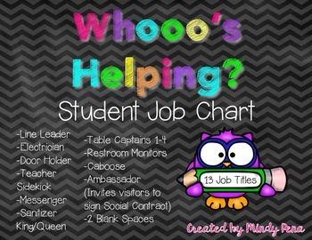 Whooo's Helping? Student Job Chart {Owls}