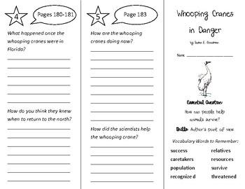 Whooping Cranes in Danger Trifold - Wonders 3rd Grade Unit 2 Week 4