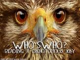 Who's Who?  Dichotomous Key Lesson using Owls