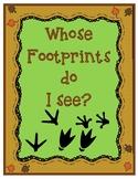 Whose Footprints do I See?