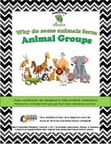 Why Animals Live In Groups