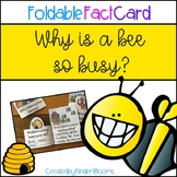 Why is a Bee So Busy? {Foldable Fact Card}