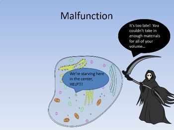 Why Are Cells Small? (Surface Area to Volume Ratio) Animated PowerPoint