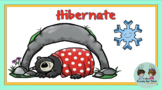 Why Do Animals Hibernate (K Ebook with Comprehension)