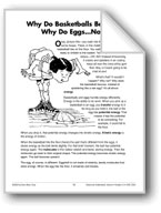 Why Do Basketballs Bounce? Why Do Eggs...Not? (Physical Science/Energy)