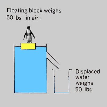 Why Objects Float