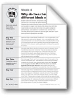 Why Do Trees Have Different Kinds of Leaves?