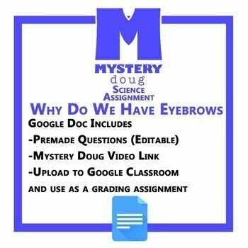 Why Do We Have Eyebrows - Mystery Science - Distance Learning
