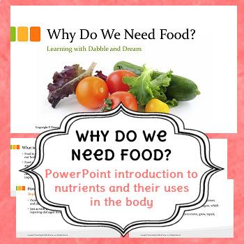 Why Do We Need Food?
