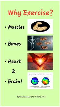 Why Exercise Poster Bundle ---3 total