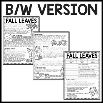Why Fall Leaves Change Color in the Fall Reading Comprehension Worksheet