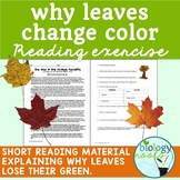 Photosynthesis-  Why Leaves Change Color Reading