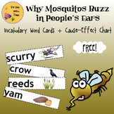 Why Mosquitos Buzz in People's Ears Vocabulary Word Cards + Cause-Effect Chart