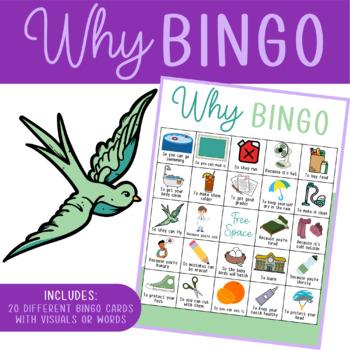 Why Questions Bingo