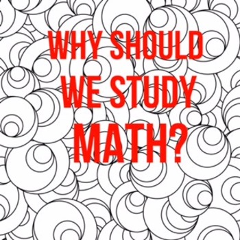 Why Should we Study Math?