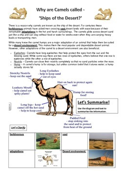 Why are Camels called 'ships of the desert?' Reading