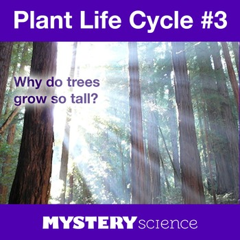 Plant Life Cycle NGSS:Leaves & Light ❤ BUNDLE:Activity, Re