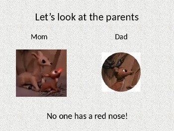 Why does Rudolph have a red nose?