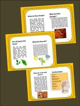 Fall Leaf Science