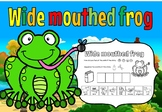 Wide mouthed frog