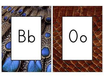 Zoo Animal Alphabet Cards