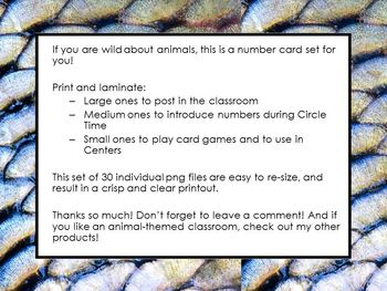 Zoo Animal Number Cards 1-30
