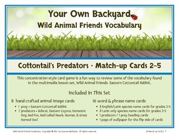 Wild Animal Friends  Cottontail Match-up Cards 2-5