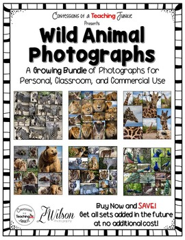 Wild Animal Photographs For the Classroom and Commercial U