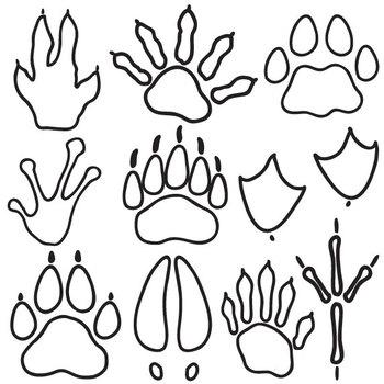 Wild Animal Tracks Clip Art Set