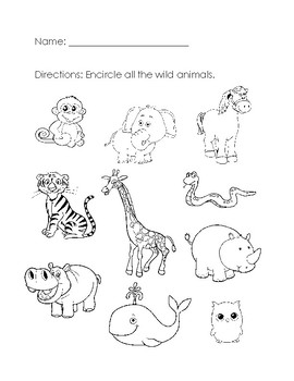 wild animals worksheet by aileen chu teachers pay teachers. Black Bedroom Furniture Sets. Home Design Ideas