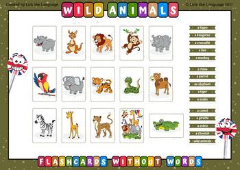 Wild Animals - English Flashcards