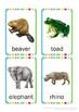 Wild Animals Flash Cards
