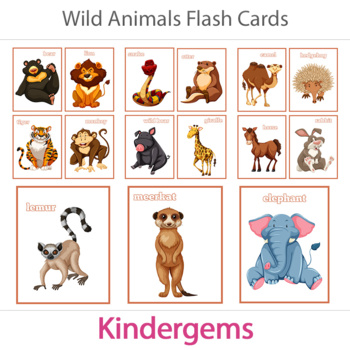 Wild Animals Flash Cards; Kindergarten; Preschool; Homeschool; Flashcards