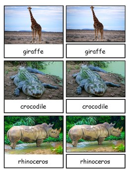 Wild Animals Montessori 3-part cards--Safari Wild Toob