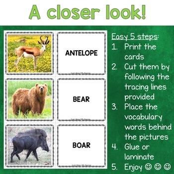 Wild Animals Photo Flash Cards