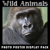 Wild Animals Posters | Science Vocabulary | Animals and Habitats | Life Science