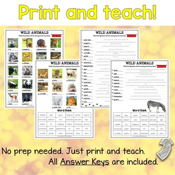 Wild Animals ESL Activities Picture and Definition Matching Puzzles
