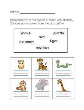 Wild Animals Worksheet #2 by Aileen Chu   Teachers Pay ...