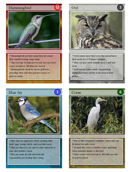 Wild Bird Trading Cards, Bingo/Slideshow and Puzzle Combo