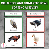 Wild Birds and Domestic Fowl Sorting Activity