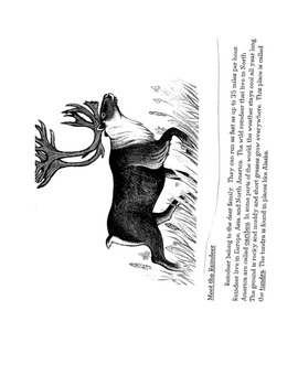 Wild Christmas Reindeer (fiction) and reindeer (nonfiction) common core unit