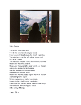 Wild Geese by Mary Oliver - Poem &  worksheet with questions - close reading