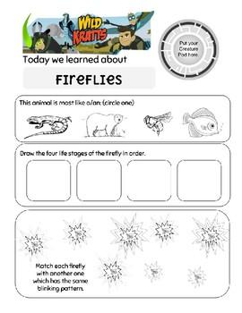 Wild Kratts Fireflies Worksheet by BKS Prep Resources | TpT