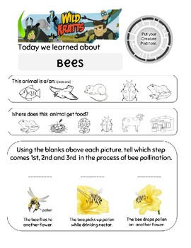 Wild Kratts Flight of the Pollinators Bees Worksheet