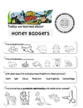Wild Kratts Honey Badger Worksheet