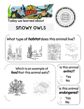 Wild Kratts Snowy Owl Worksheet