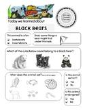 Wild Kratts Spirit Bear (black bears)