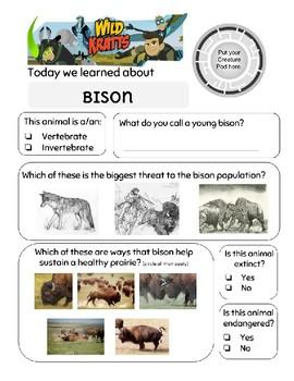 Wild Kratts Where the Bison Roam