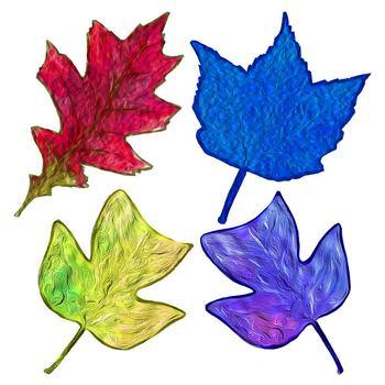 Wild Leaves Clip Art - Maple - Oak - Tulip Tree - Brightly Colored